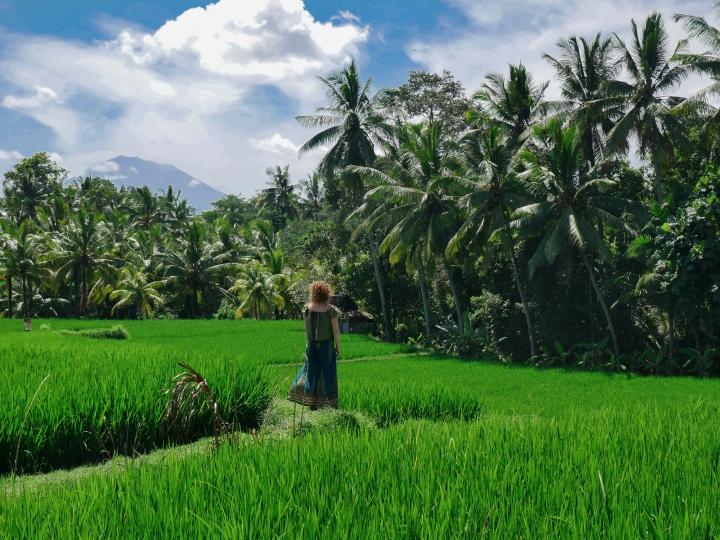 Southeast Asia travel diary: Days 31 to35